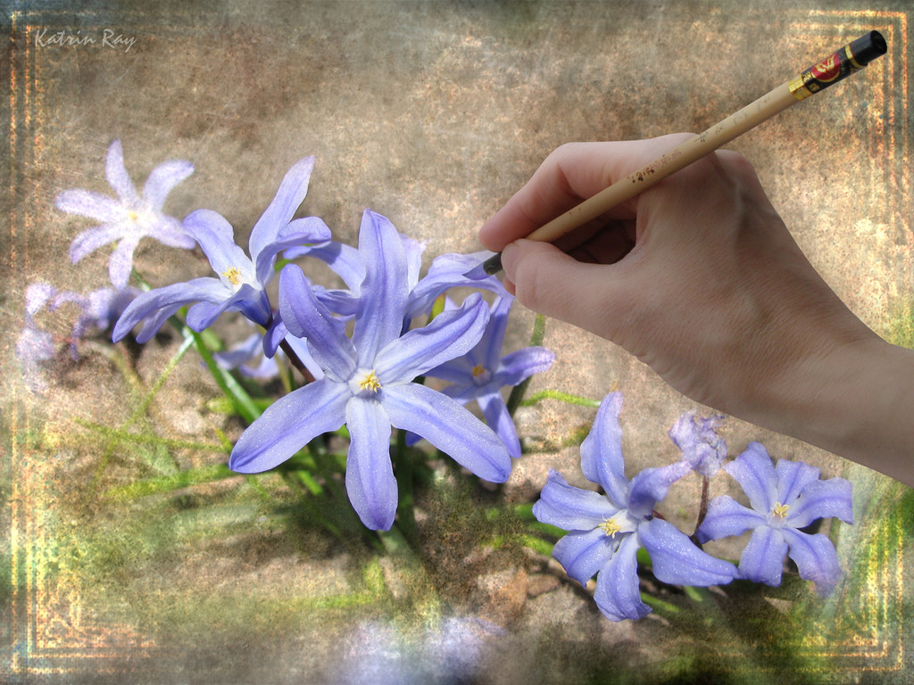Painting Flowers For Spring