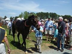 DSC07046 (ryeamans525) Tags: friends uva horserace foxfield