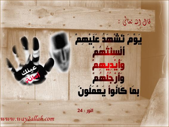 حملة عينك أمانة بالصور 3488937847_591657d9d
