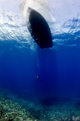 Alone in the Blue (Lea's UW Photography) Tags: blue boot boat underwater maui fisheye diver fins lanai tokina1017mm unterwasserfoto leamoser