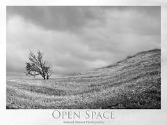 Open Space (Hamad Al-meer) Tags: bw white black tree grass clouds canon landscape eos europe open space hamad 30d حمد almeer platinumphoto المير hamadhd hamadhdcom wwwhamadhdcom