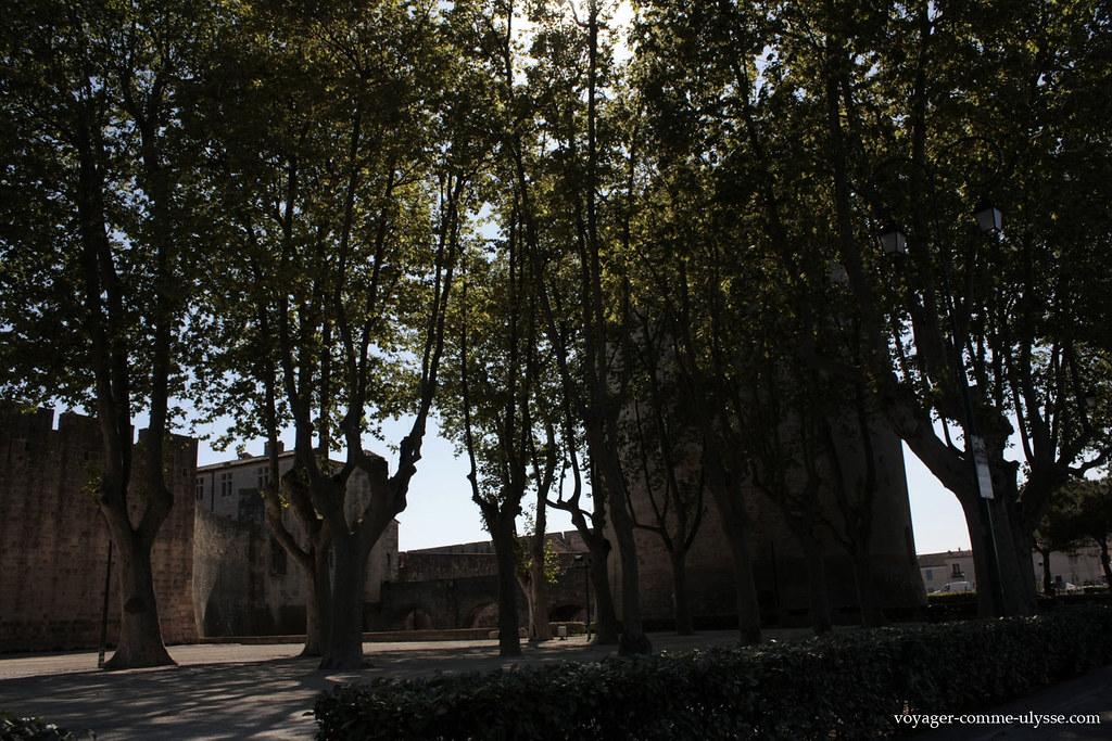 Na Idade Média, tinha-se o hábito de cortar todas as árvores das redondezas, para impedir o inimigo de ter madeira.