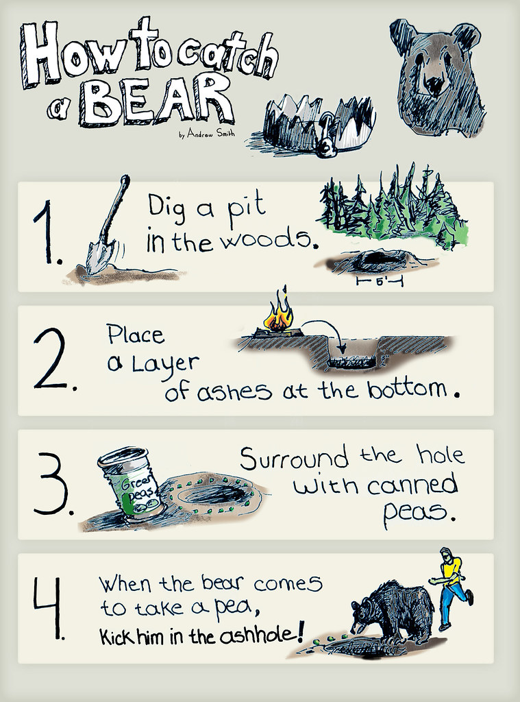 How to catch a bear by Andrew Smith