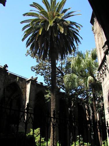Barcelona HY batch 1 0509 010