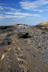 Tide Gone (Tragopodaros) Tags: autumn sea england seaweed clouds islands coast seaside sand rocks cheshire shoreline bluesky september shore coastline lowtide wirral westkirby rockpools hilbre hilbreisland wildcoast septemberlight middleeye cheshiresislands