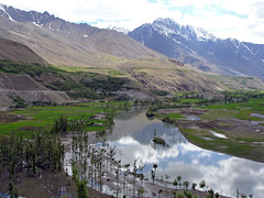 Pak_074 Yasin to Shandur (Roger Nix's Travel Collection) Tags: pakistan nwfp northwestfrontier chitral ghizer ghizar