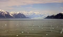 Yakutat Bay & Hubbard Glacier (C.h. Yang) Tags: ocean ice alaska landscape glacier yakutat hubbard hubbardglacier yakutatbay nikond800 oceanglacier