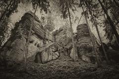 Krkonoe (sole) Tags: naturaleza nature forest woods rocks europa europe natuur czechrepublic tsjechi krkonoe riesengebirge sole carmengonzalez reuzengebergte