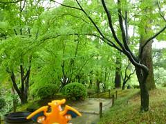 Charizard in Hiroshima, Hiroshima 5 (Shukkei-en Garden) (Kasadera) Tags: toys hiroshima figure pokemon pokmon  charizard   glurak  shukkeiengarden pokemonkids   dracaufeu
