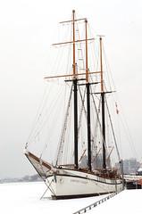 White Ship, White Lake (wooobear) Tags: winter white toronto cold ice ship waterfront lakeontario