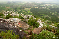 Cerro Pan de Azúcar | Pan de Azucar Hill (Empezar de Cero / Ariel Cruz) Tags: naturaleza nature trekking uruguay piriápolis pandeazúcar cerropandeazúcar reservadefauna