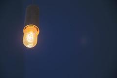 Glowing filaments, Established Coffee, Belfast (peripathetic) Tags: blue lightbulb canon belfast 5d tamron 2470 5dmkiii 5dmk3 canoneos5dmk3
