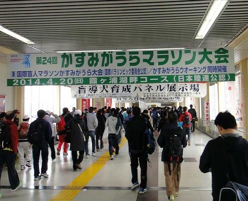 20140420_kasumigaura marathon 5