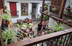 Court yard View (JavaJoba) Tags: tourism mexico hotel nikon chiapas lightroom sancristóbaldelascasas sanchristobal restaurantnikon d5200 nikond5200 tierrayciedo