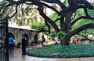 The Alamo - San Antonio Texas - 1991