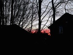 Distant winter sunset (niknak2016) Tags: sundown sunsetsilhouette sungoingdown sunsetphotography sunset settingsun eveningsky evening endoftheday skyline wintersky wintersunset skyscape pinksky lookingup upabove beautyinnature naturalbeauty nature natural naturephotography dusk