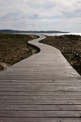 My way (A.González) Tags: way path camino wood madera playa beach paisaje landscape arena sand galicia alanzada ogrobe ogrove españa spain pontevedra duna dune