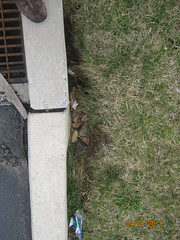 IMG_0544 (Stormwater Maintenance, LLC) Tags: problem catch inlet curb sinkhole