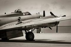 Checking the Plane (Erik Pronske) Tags: galveston museum sepia plane vintage airplane army star flying war texas flight historic b17 lone bomber fortress tone sepiatone b17g worldwarll scholesfield