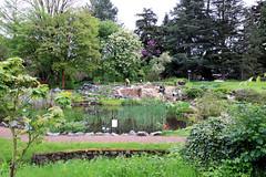 Botanischer Garten - Darmstadt 01 (Stefan_68) Tags: park germany garden deutschland pond hessen teich garten darmstadt parkanlage