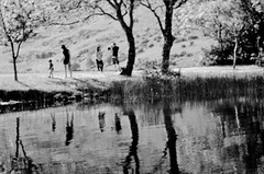 Examples (brendan ) Tags: trees light blackandwhite sun sunlight lake reflection tree blancoynegro water sunshine june reflections sunny photographic reflect barra motherandchild examples punctuation gouganebarra wifeandson gougane sarangheo livelearnlove rebelsab brendan photographicpunctuation