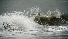 Wave (STAFF.PAUL) Tags: sea water wales waves newquey