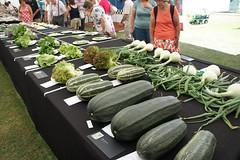 Vegetables! (JRH70) Tags: flowers garden cheshire sony flowershow rhs royalhorticulturalsociety nex tattonpark 2013 sonynex5 rhssummerfruitvegetablecompetitionpavilion