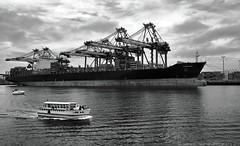 Navarino and Lani Kai POLA (Explored #92 7/27/2013) (lhg_11, 2million views. Thank you!) Tags: blackandwhite losangeles ship cranes shipping pola sanpedro 1000views portoflosangeles losangelesharbor explored 100comments cargovessel mygearandme mygearandmepremium