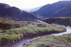 24 Bergen (M. SCHULZ) Tags: exa 1b canon 9000f kodak farbwelt 400 analog norwegen 35mm ulriken bergen film norway norge ihagee iso analogue