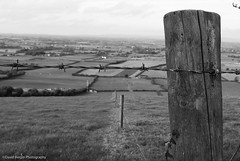 (David Bergin Photography) Tags: white black lines closeup fence outside countryside wire focus distance far ditches