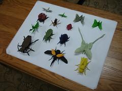 Origami Masters Bugs - All the models! (shuki.kato) Tags: park jason robert j origami sebastian daniel bugs ku marc masters won lang robinson kato arellano shuki kirschenbaum