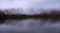 L'tang reflte, profond miroir ...(3) (Pakalou44) Tags: reflection pond berry reflets icm tang