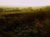 Rintin; memory (Timoleon Vieta II) Tags: life colour landscape spirit memory timoleon