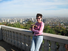 High above Montreal: Mitzi Szereto with Teddy Tedaloo (Mitzi Szereto) Tags: canada tv quebec montreal cities writers mitzi teddybears authors mitziszereto teddytedaloo