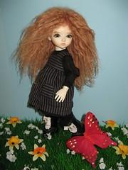 CUSTOM HOUSE AIDOLLS Petite Hanael (sistersev) Tags: doll bj petite poupe customhouse hanael aidolls