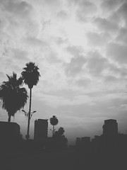 black and white (ayman_ay17) Tags: white black egypt flickrandroidapp:filter=none