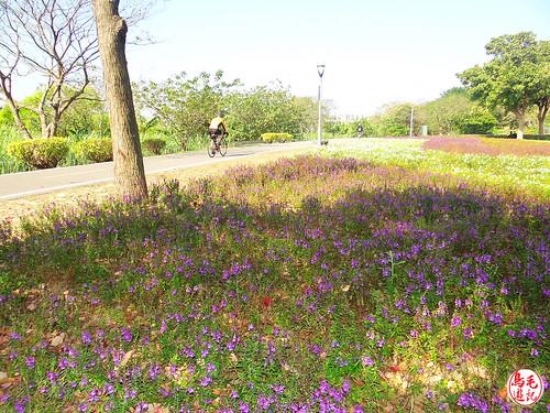 景福河濱自行車步道、客家文化館 (17).jpg