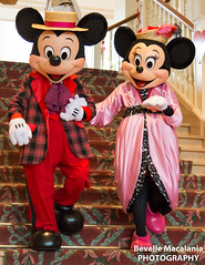 Greetings at Disneyland Hotel - Valentine's Day Outfits (Bevelle Macalania) Tags: hotel day disneyland valentines greeting outfits フランス シェシー イル・ド・フランス