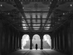 20140301_014 (k_dellaquila) Tags: nyc newyork pentax centralpark hc110 pinhole ilforddelta400 645n alwaysexcellent truthandillusion