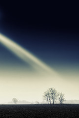 One Light (Photographer Artist) Tags: blue trees winter field weather fog sunrise landscape midwest farm country peaceful calm toned canaon michaelhuddleston