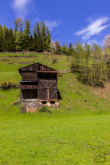 ms (Andrea Moraschetti Photography) Tags: wood sky cloud mountain building green nature ngc trento rabbi trentino altoadige maso valrabbi