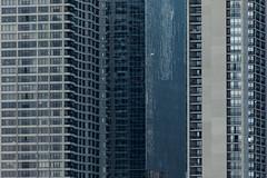 Toronto denisty (Gary Kinsman) Tags: toronto ontario canada tower glass architecture facade skyscraper downtown apartments zoom steel modernism compression telephoto condo highrise harbourfront condos condominium wealth density downtowntoronto 2015 repetitive canon70300mm torontohabour canoneos5dmarkii canon5dmkii