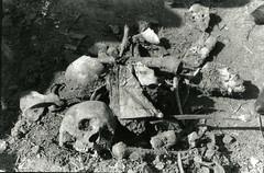 Photographer: Rashid Talukder (যুদ্ধদলিল) Tags: rashidtalukdar liberation war 1971 killingground boddhobhumi remains political pakistan military atrocity mirpur dhaka bangladesh southasia asia