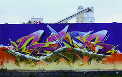 GAMOKSLIK 17 (OVER GAMS) Tags: gams gamer 3gc birthday gamokslik bordeaux graffiti streetart