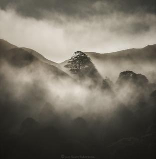 Mist and Mood