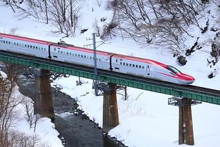 JAPAN RED run through winter nature