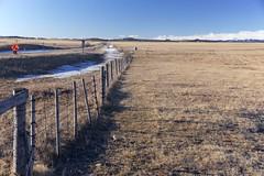 Fence and fields (John Andersen (JPAndersen images)) Tags: alberta chinook cloud fence prairie road rockies sky spring