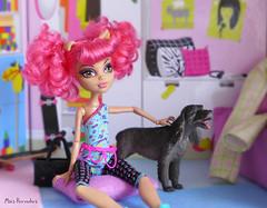 One Pink Teen Room (Mus Parvulus) Tags: monsterhigh mh howleen danceclass ikeaspexa doll