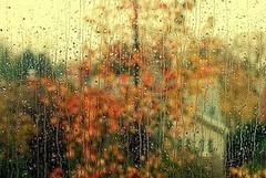 خدا هم مرد بود، دلش باران میخواست... (monje.ir) Tags: باران بیقرار خدا دلتنگی مرد