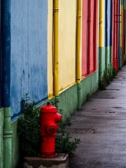 Lyon Confluences - Mur, rue Vuillerme. (Gilles Daligand) Tags: lyon rhone mur peint borene incendie rouge olympus omdem5 trottoir